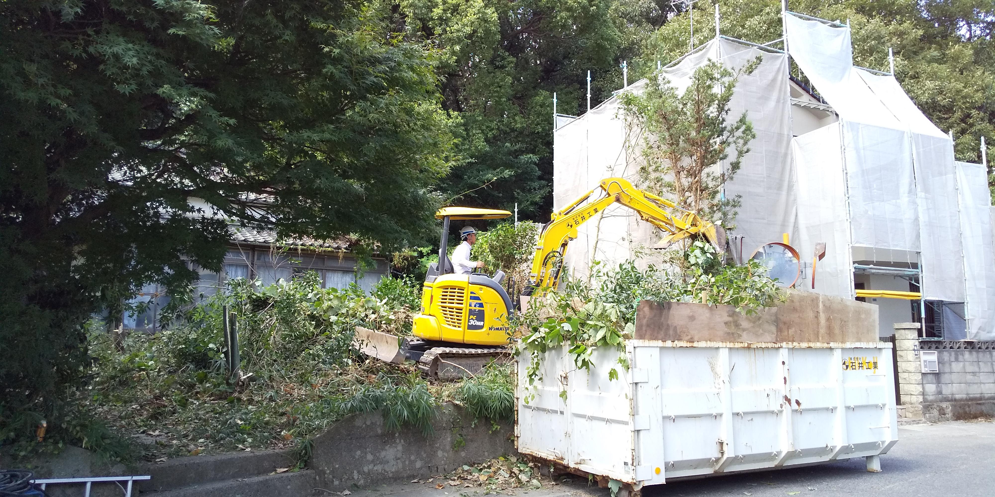庭木伐採施工中